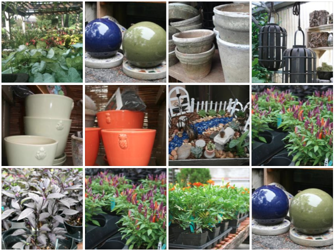Gazing balls, ceramic pots, bird feeders, and annuals