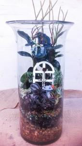 A tall terrarium Molly planted...