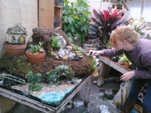 Lauren, Adding Plants...