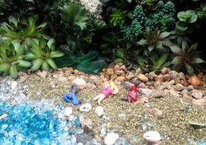 Tiny sunbathers...
