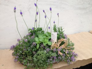 Jamie created this Mother's Day gift using herbs and annuals...
