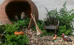 A broken pot is home to morel mushrooms...