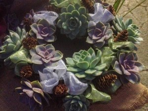 Loops of ribbon and tiny pinecones embellish this echeveria wreath...