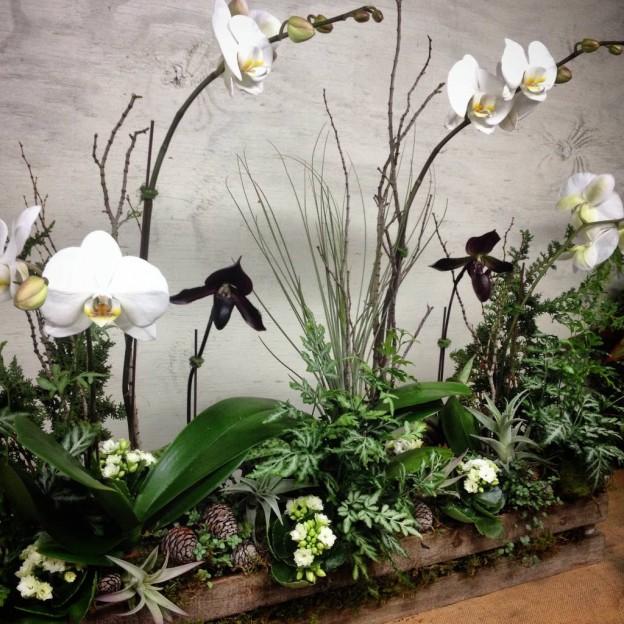 More holiday inspiration arrangements flowers and for Garden arrangement of plants