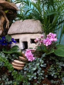 A miniature violet flower garden...
