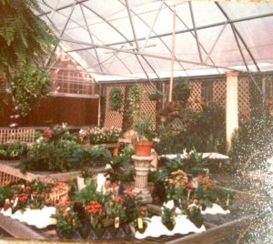 1991...Inside the Greenhouse