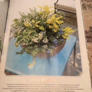 This brown bowl I designed was actually featured in another post on our website titled 'A Brown Bowl, 2 Ways'. This is the chartreuse, blue and white version for sun... Photo Courtesy Southern Living Magazine