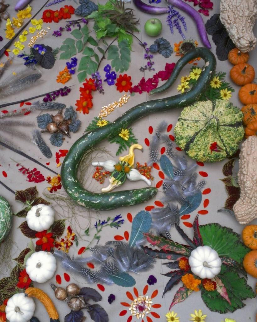 Mandala Market Gardens The Layout: Our Fall Mandala – It's A New Season!