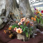 Flowers in Driftwood...