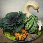 Fall - Gourd Arrangement