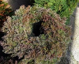 Southern Greenery Wreath...