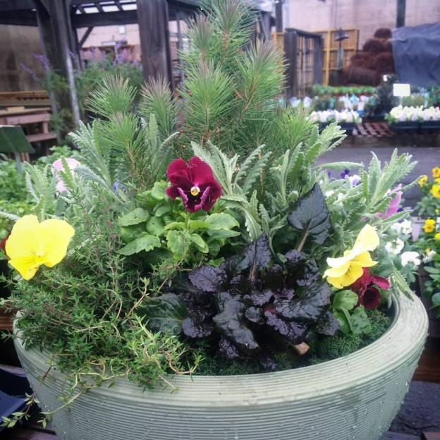 crescent garden planters Oak Street Garden Shop and Local Market