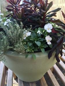 Lightweight Green Planter - Planted