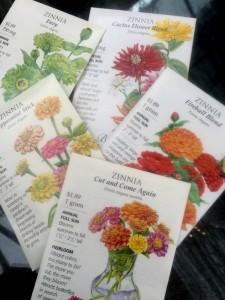 Spring Seeds - Botanical Interests