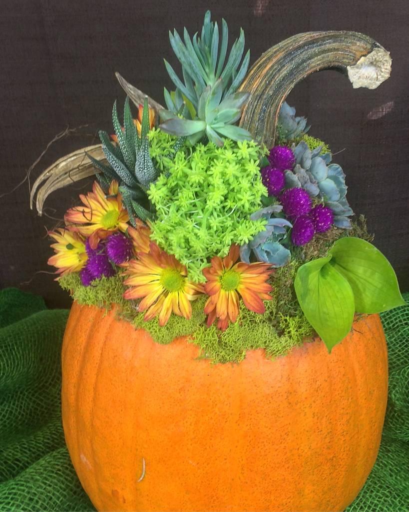 Wisconsin Gardening Enewsletter: Oak Street Garden Shop And Local Market