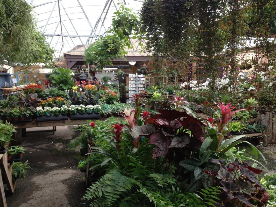 About Us. Oak Street Garden Shop ...