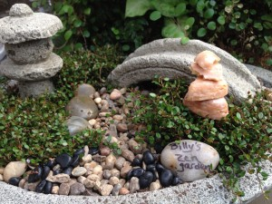 Billy's zen garden...