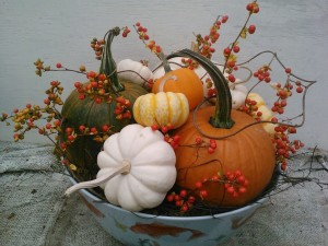 Pumpkin/gourd/bittersweet centerpiece in bowl