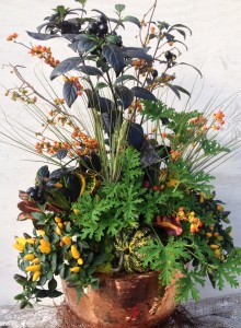 Fall Arrangement in Copper