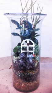 A tall terrarium Molly planted...