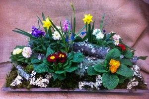 a spring garden using lichen covered branches and spring flowers...
