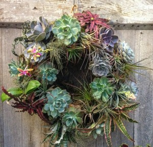 living wreath...