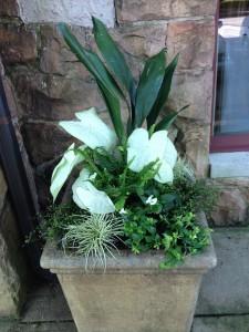 Chez Fonfon Shade Planters - A New Season