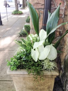 Chez Fonfon Shade Planters...Caladiums and More For Summer