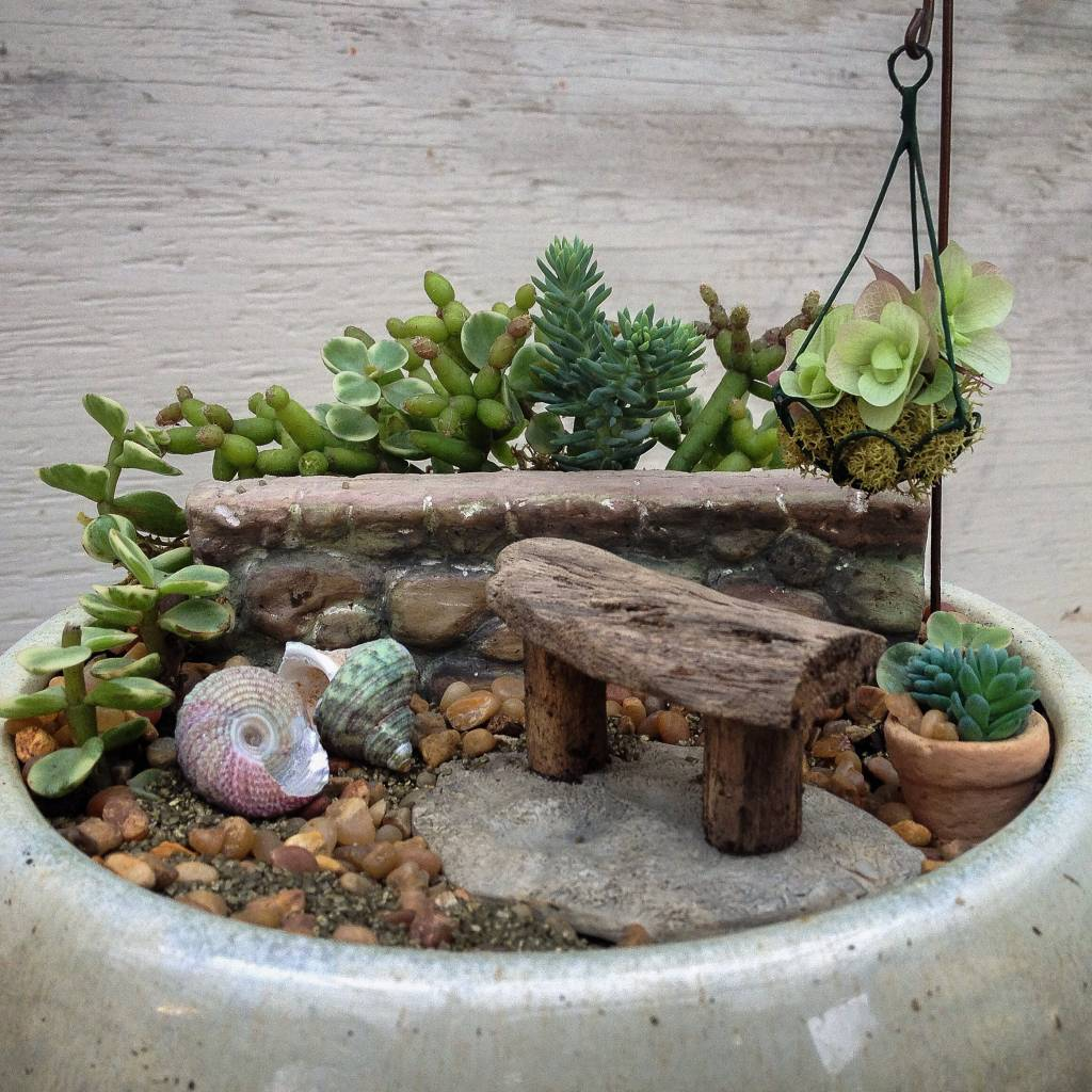 Miniature Garden With Driftwood Bench