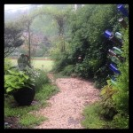 A Path Through the Garden...