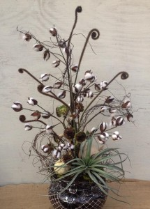 Cotton, sunflower seed heads, fern fiddle heads and an airplant