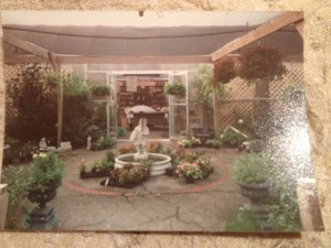 1991...The entrance - note the flat-topped shade house...
