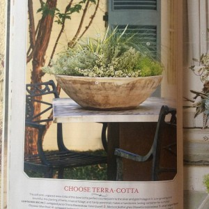 I wanted to capture a Mediterranean feel with this summer planting in a large terra cotta bowl. I started with a variegated yucca and added drought tolerant silver thyme and sedums, a trailing jade plant (portulacaria) and a wispy Mexican feather grass (Nasella tenuissima)... Photo Courtesy Southern Living Magazine