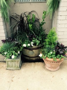 Trio Of Fall Pots