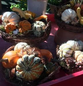 Pumpkin centerpieces...