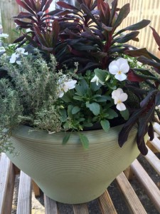 Lightweight Green Planter - Planted