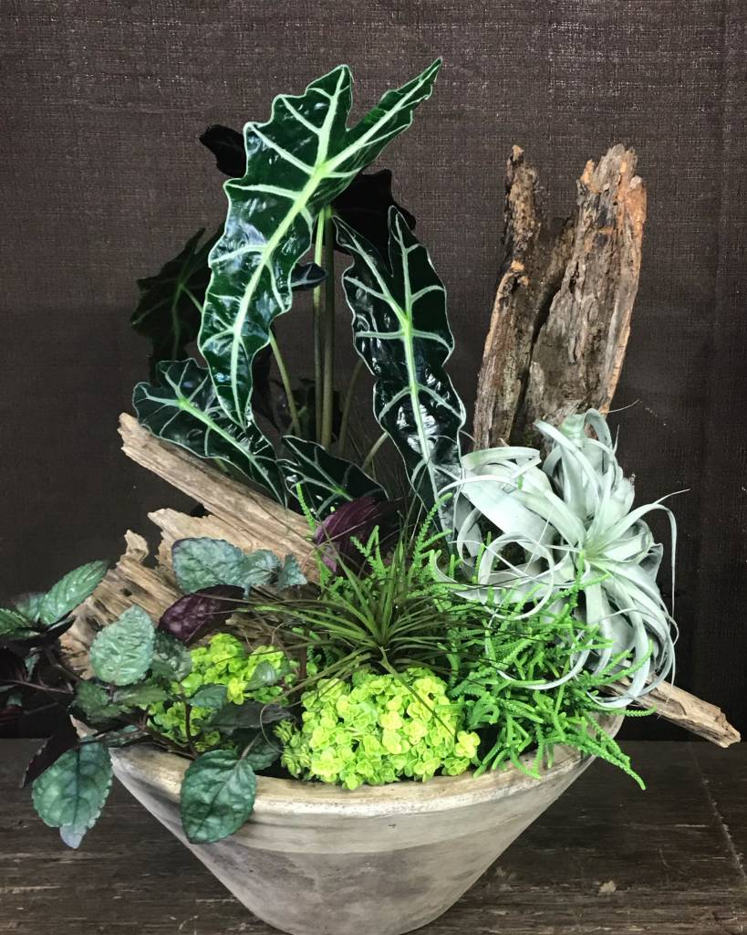 Planted Container with Driftwood