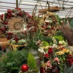 Greenhouse - Holiday