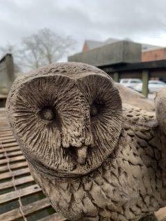 Owl Statuary 2020