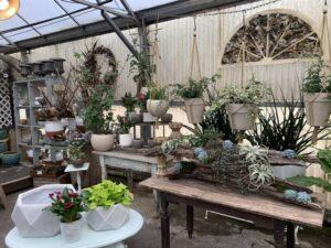 Greenhouse - Summer